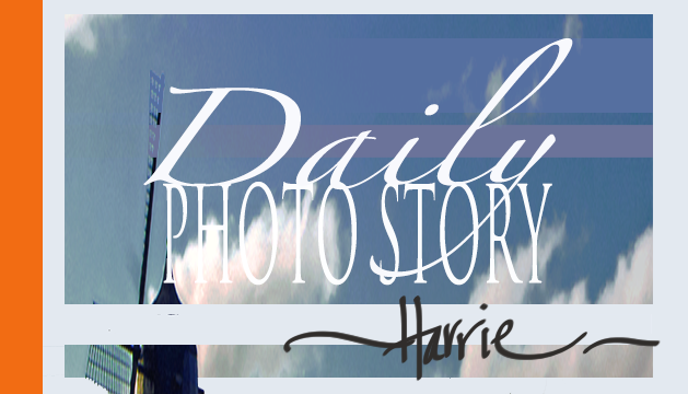 daily phot story